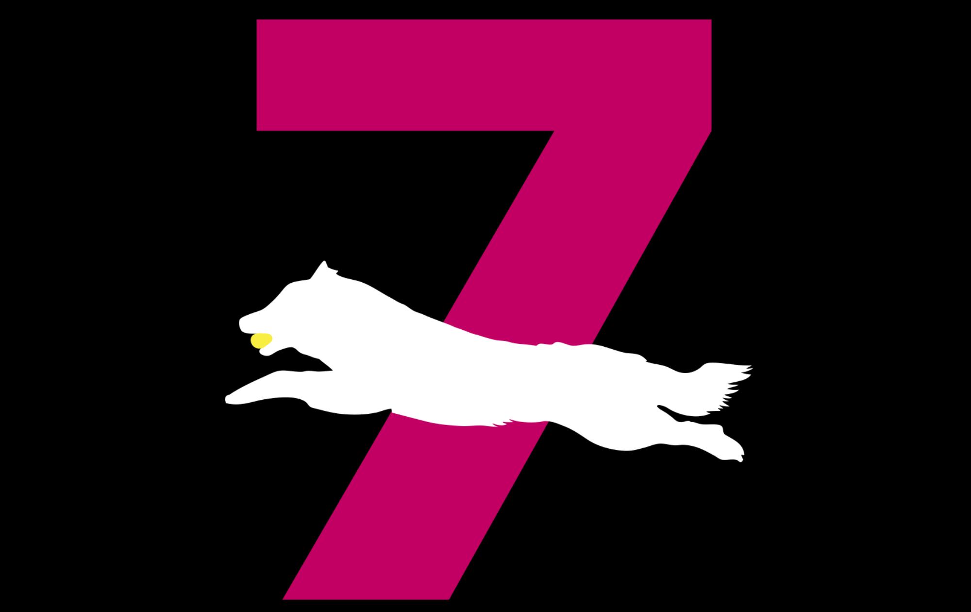Flyball - Die 7 Zwerge